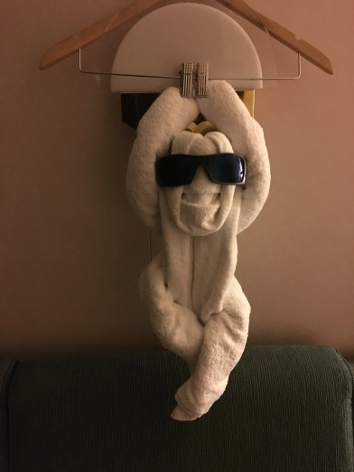 One of the many towel animals our cabin attendant, Doug, left for us.